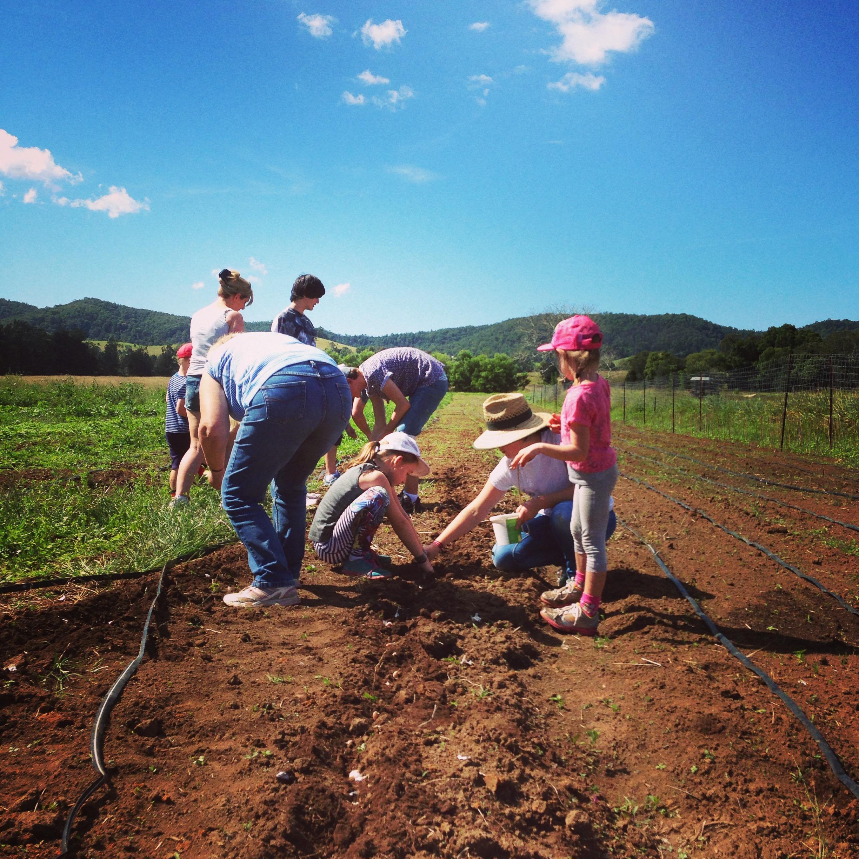 Visit My Farm Australia - Near River, Hollisdale NSW