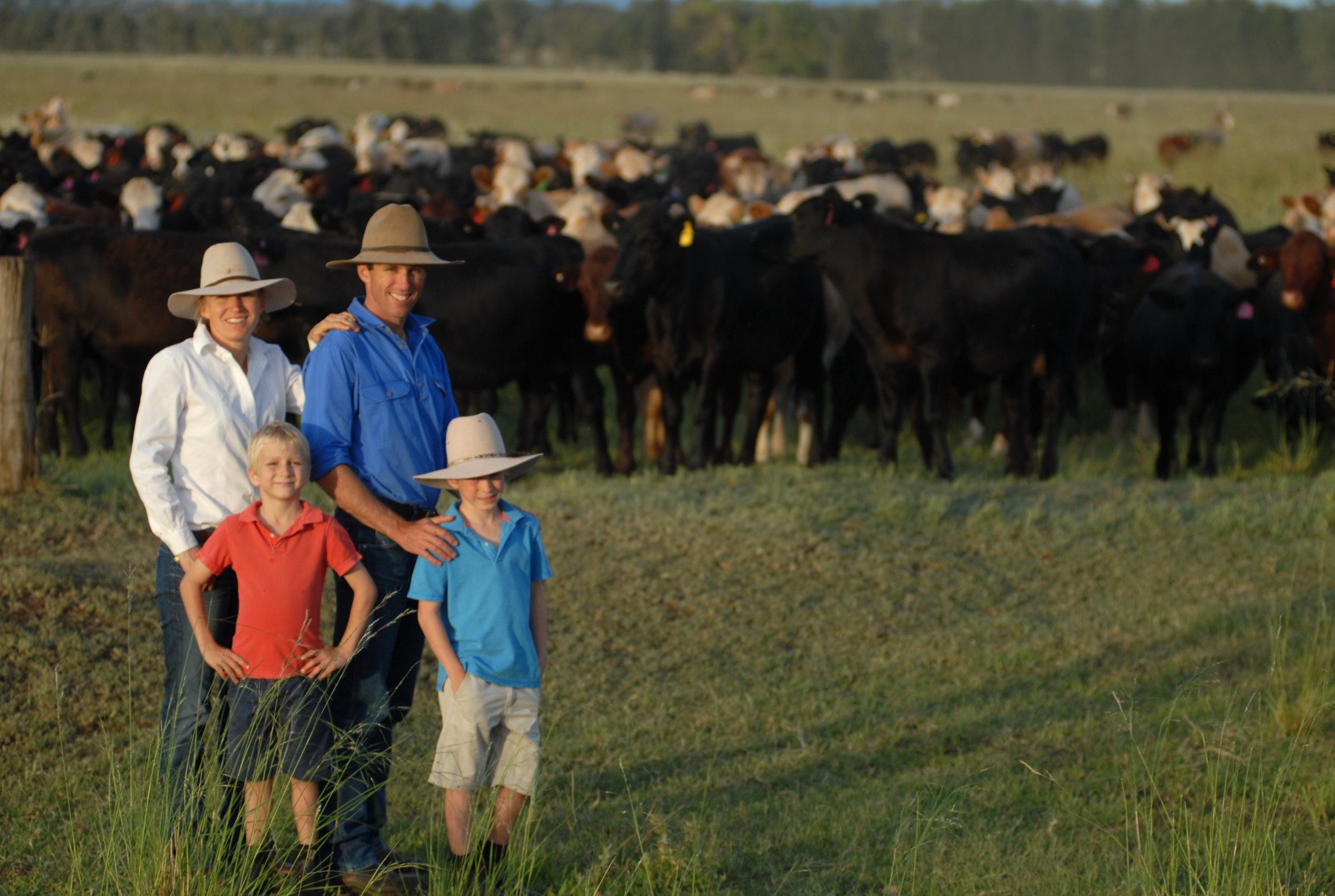 Visit My Farm Australia - Colorado, Quirindi NSW