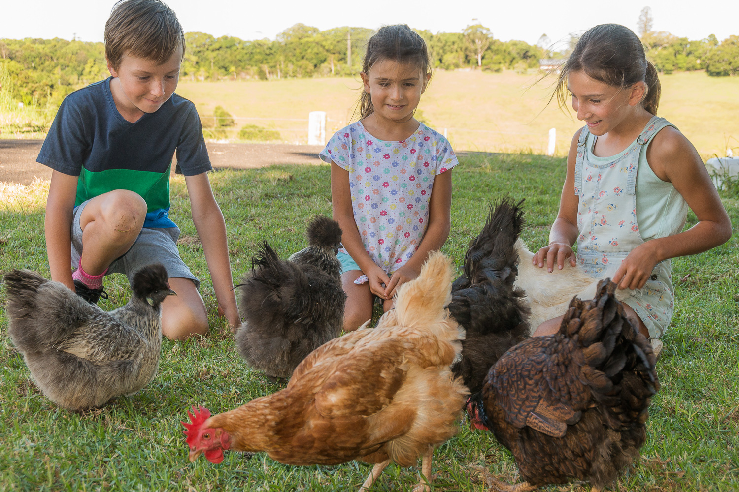 Visit My Farm Australia - Byron Bay Farm Stay, Byron Bay NSW