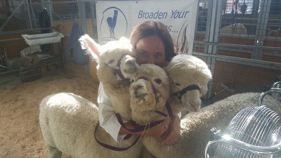 Visit My Farm Australia - Big Sky Alpacas, Old Bonalbo NSW