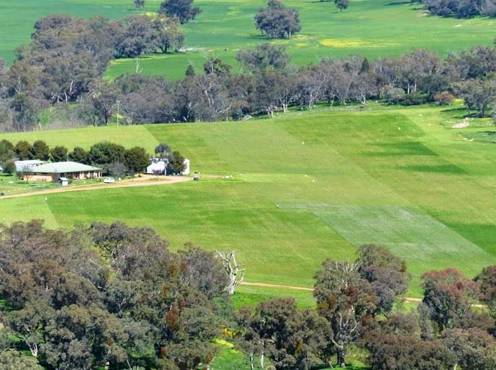 RoundRange farm view.jpg