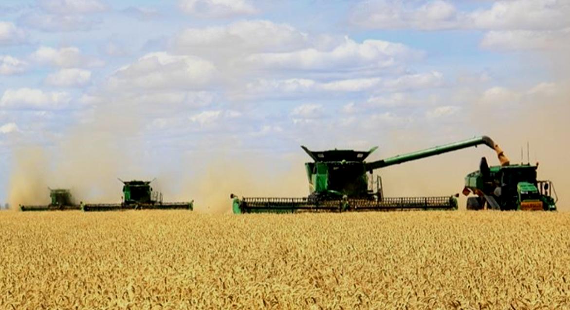 Visit My Farm Australia - South Bunarba Agriculture, Mungindi NSW/QLD