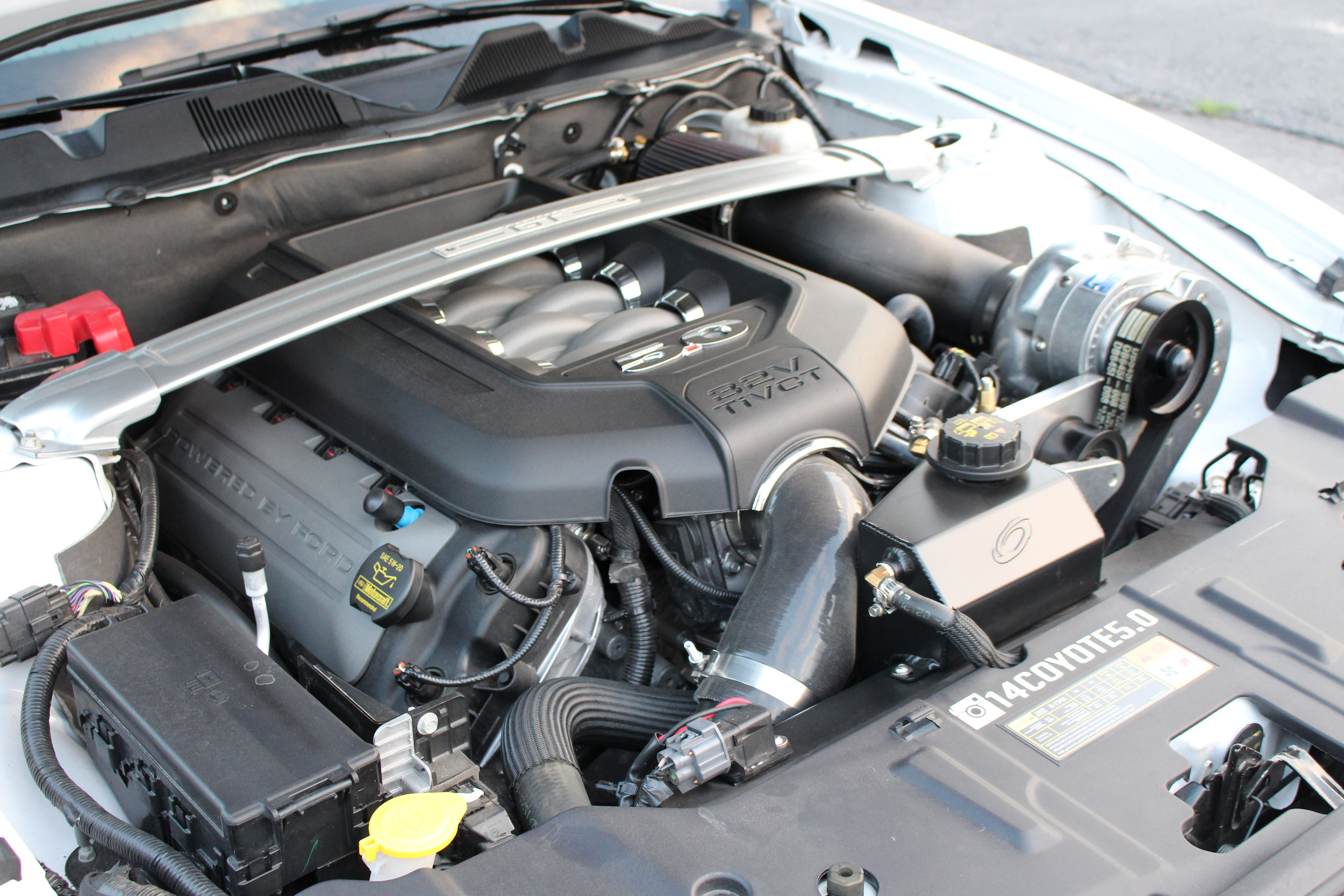 ProCharger Stage II (2014 Mustang GT)