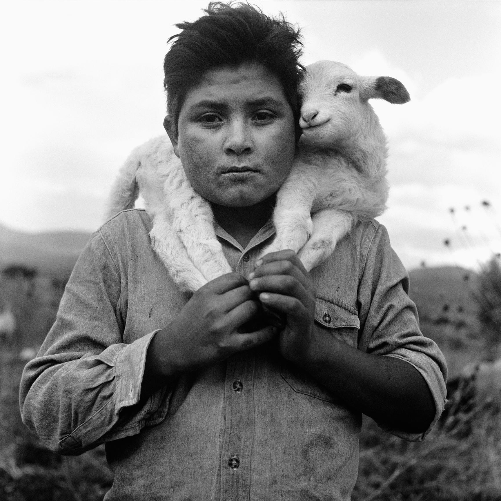 Shepherd/Mexico