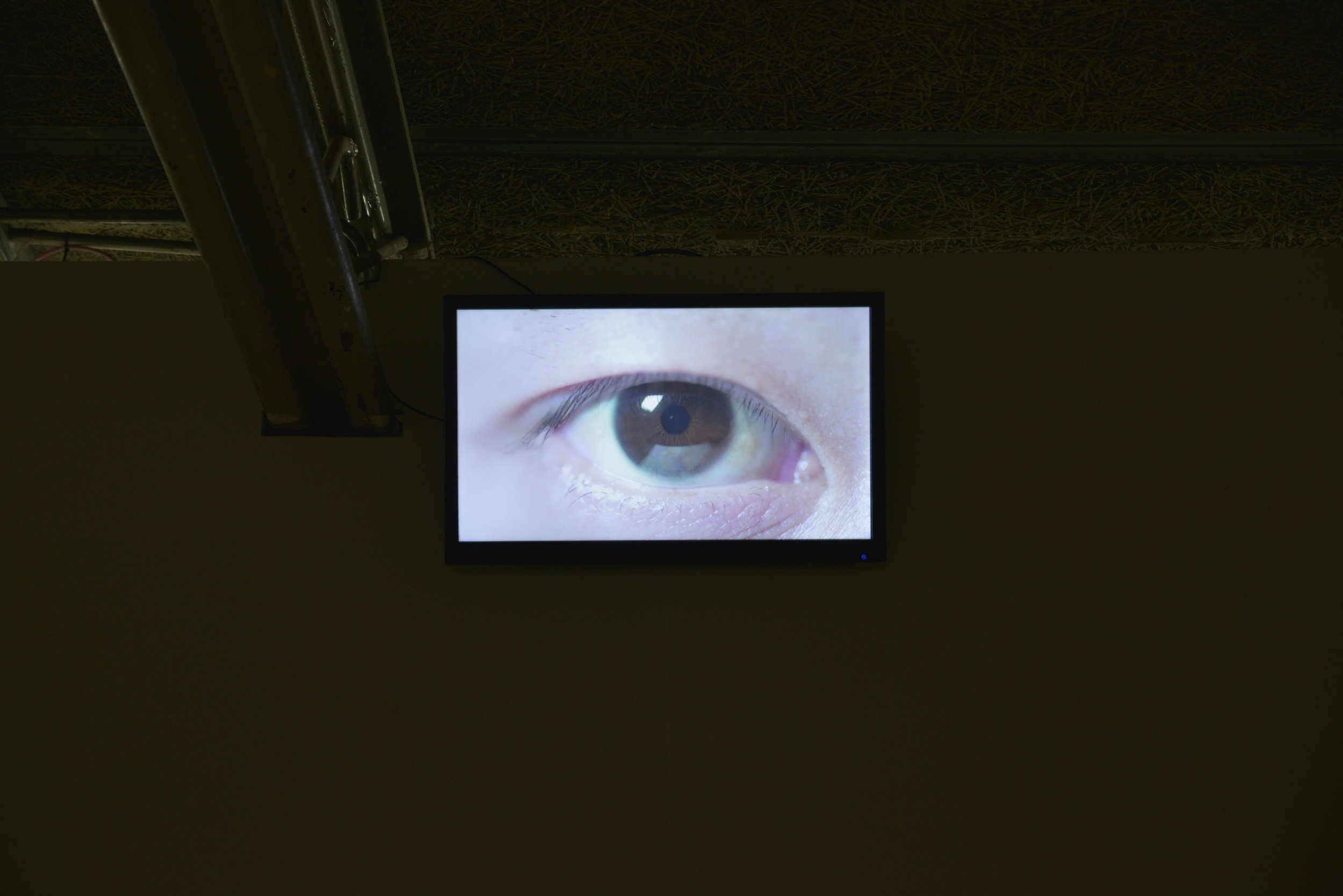 installation view / looped video