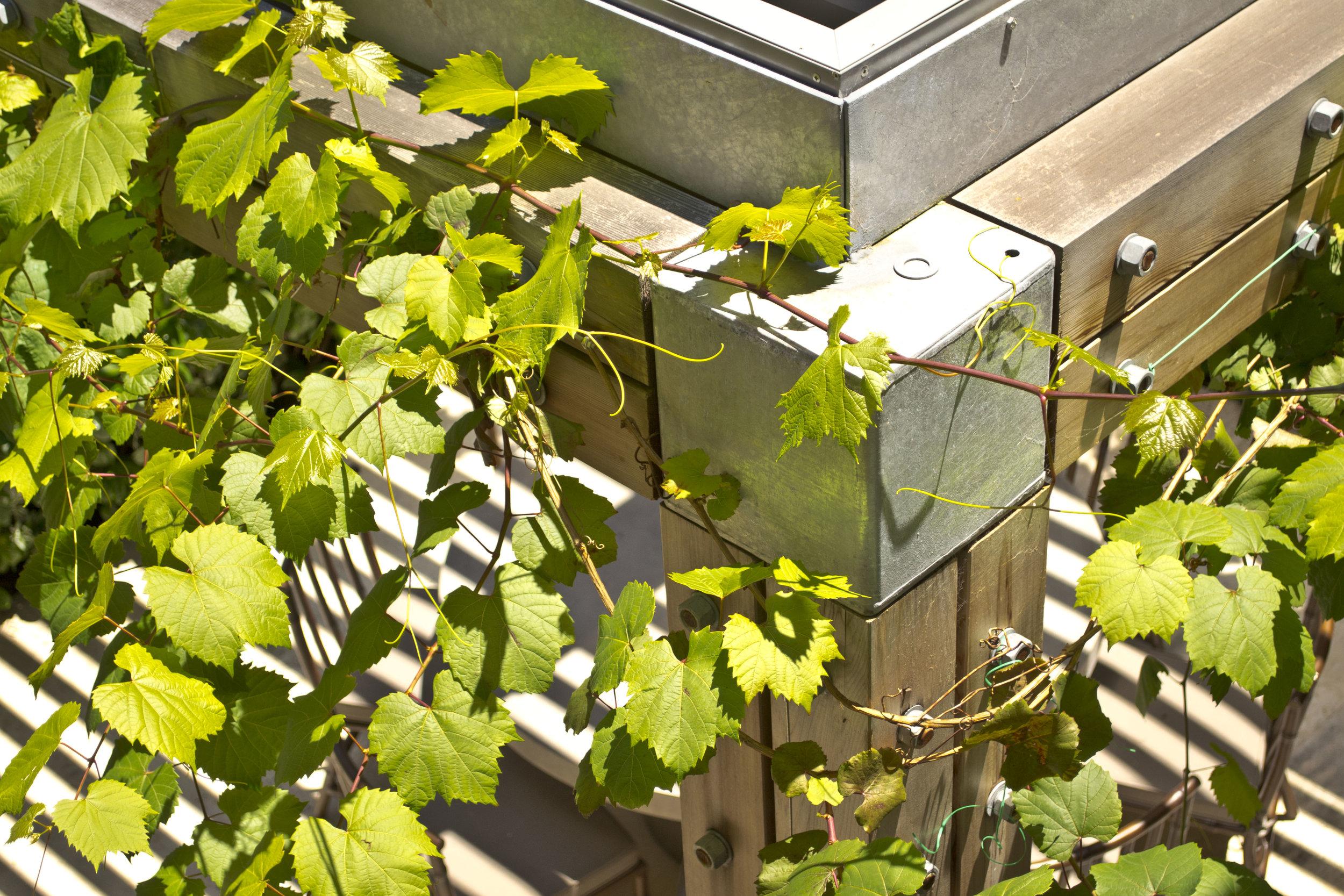 Garden Folly_003.JPG
