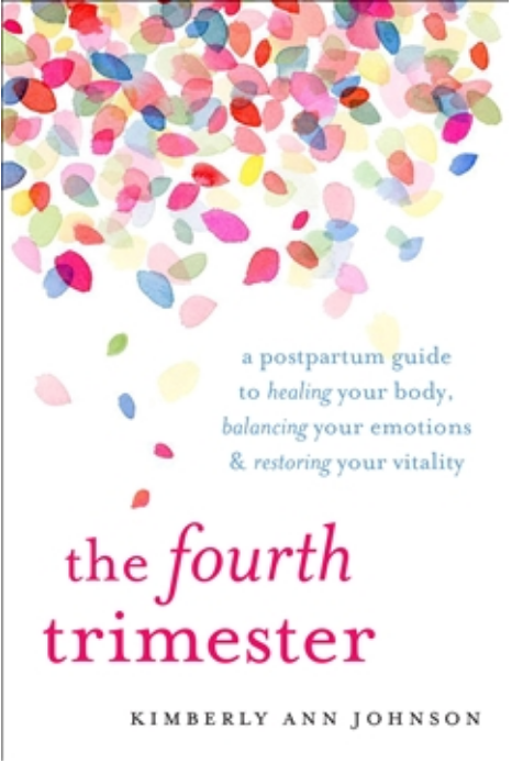 The Fourth Trimester - book