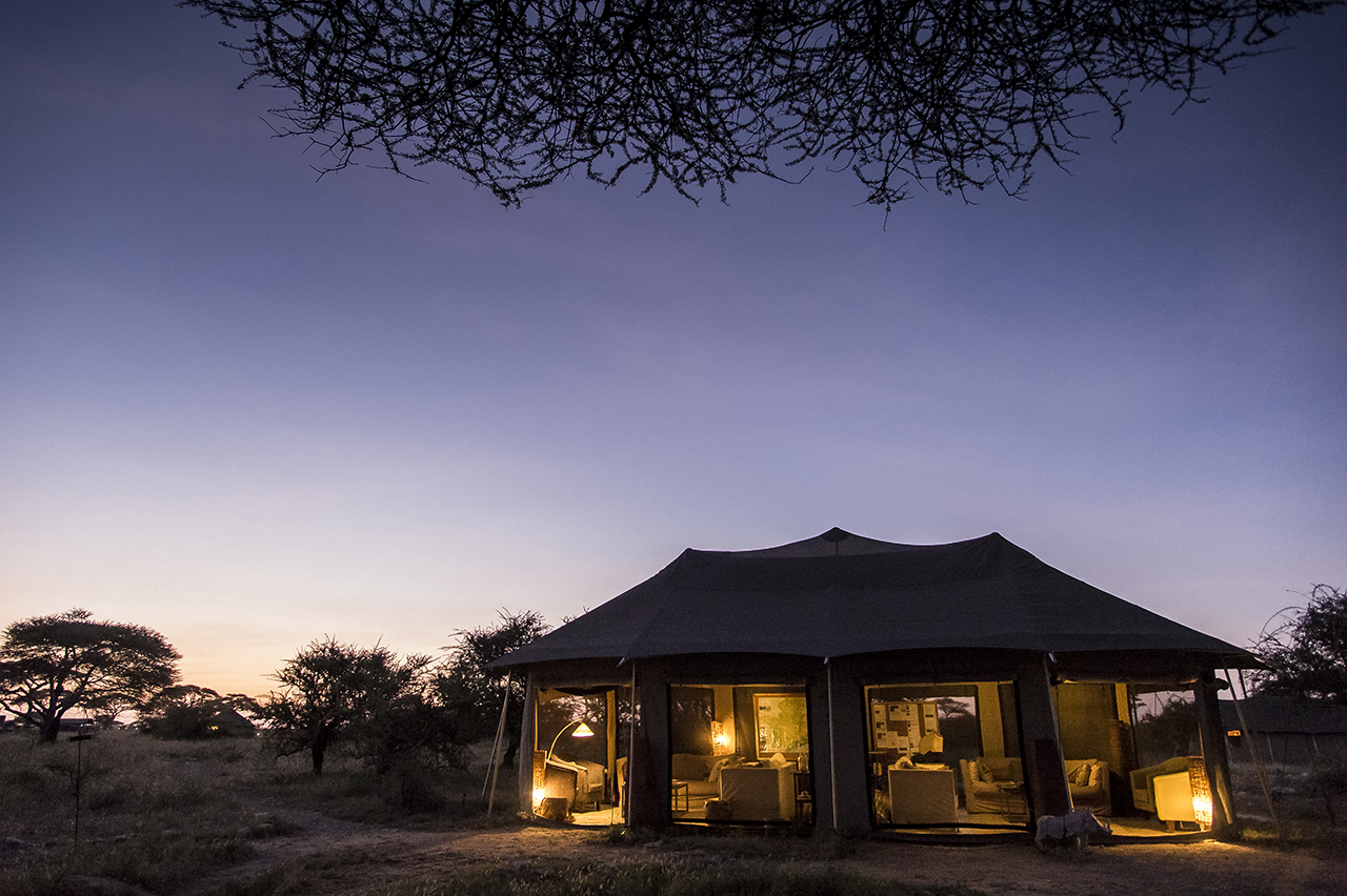 """Surrounded by an ocean of grass, Asilia Camp makes it possible to understand the Masai meaning of Serengeti: """"endless plain"""". Asilia Camp is the only tent camp located in the eastern prairies of the central part of the Serengeti, magnet for cheetahs and lion, out of the frequent passage of tourists, as off-center. The permanent camp of 8 luxury tents is set up more than an hour from its nearest neighbor. Approximately 2,700 beds in approximately 120 safari camps are available throughout the park."""