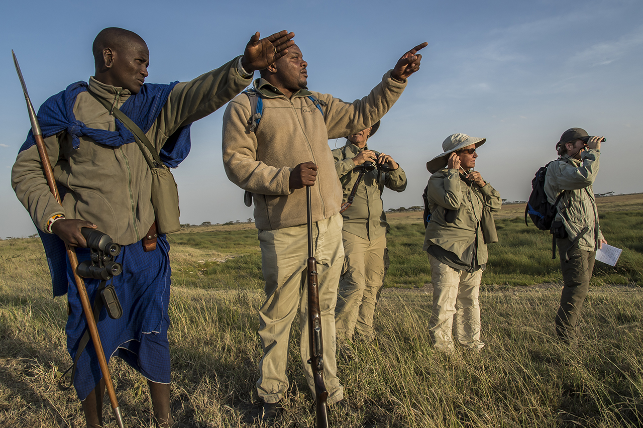 In the early morning in the eastern part of Serengeti Park. A young Masai warrior indicates the presence of a buffalo at Blessed MPOFU (2nd Left), a guide who leads a tourist group on a walking tour. A Masai, accompanies each walk as much for the folklore as for their propensity to discern with an impressive acuity the animals to medium and long distance.