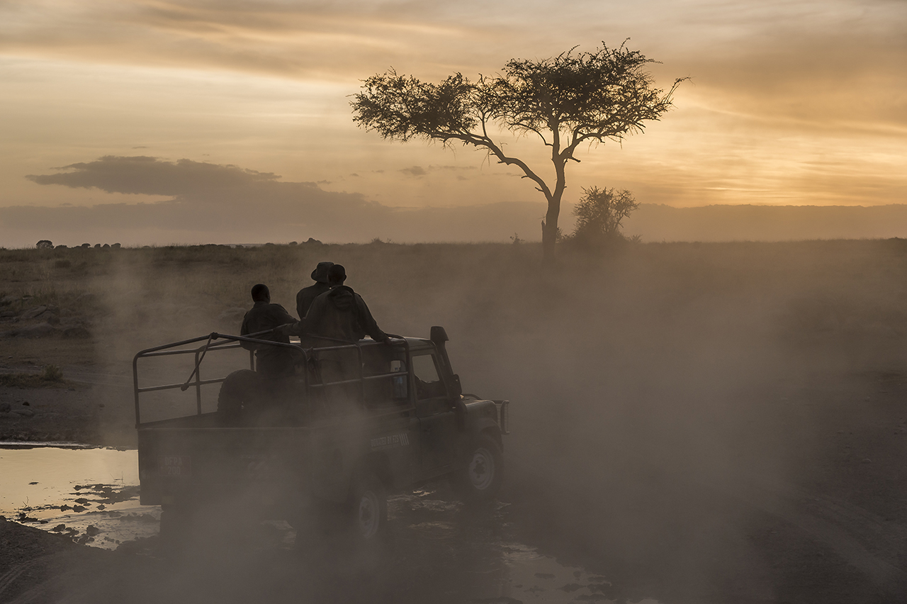 """Rangers of the TANAPA anti-poaching unit (Tanzania National Parks) in the Moru region of southern Seregenti are patrolling from their Moru headquarters. 52 rangers control an area of ,000 square kilometers to protect the last 30 black rhinoceros in the south of the Serengeti. The rest of the park is home to 20 other animals. Each of them is a treasure, as to the poachers nothing is as precious as their horn. """"If a poacher can choose between killing a group of elephants or a rhinoceros, he will kill the rhino,"""" Ngoti said. """"The price on the black market for the horn, the material of which is similar to that of the nails, is in Vietnam or China at more than $ 10,000 per kilo"""".  His men can be proud of their work. By the early 1990s, poachers had reduced the Serengeti's rhinoceros population to only two females, until the moment when, from the nearby protected area of gorongoro, Rajabou, a male migrated to the area in 1993. A stroke of luck. Thus, while slaughtering animals in South Africa results in degeneration, the Serengeti population is growing. Currently, five to six pups are born each year."""