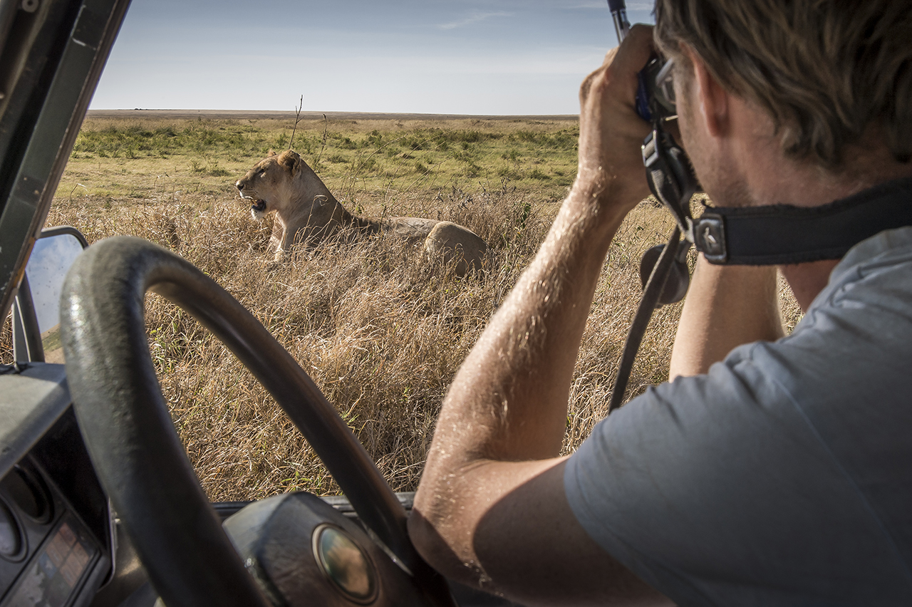 A field assistant working for a research project about lions in the Serengeti, tries to identify a femelle by watching her with binoculars.