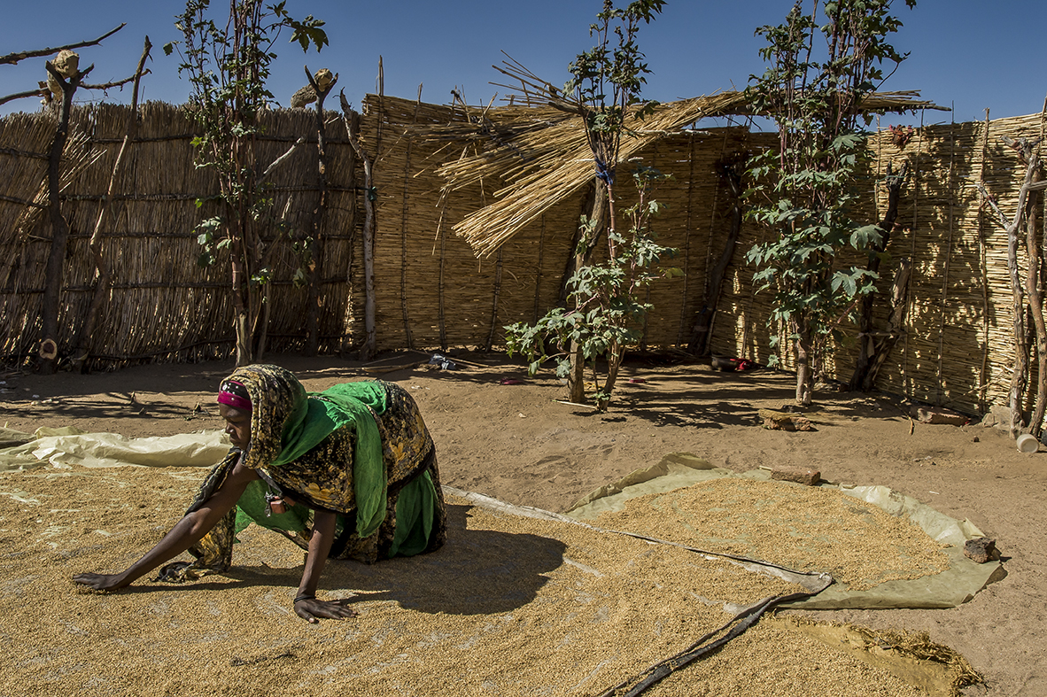 Mourra village, Ouara disctrict. In the yard of her family plot, Tijani IBRAHIM, 27 years old, mother of 4, spreads some millet on a tarpaulin to dry it. Her 2 years and a half son, Ashta Saleh has been a victim of malnutrition.