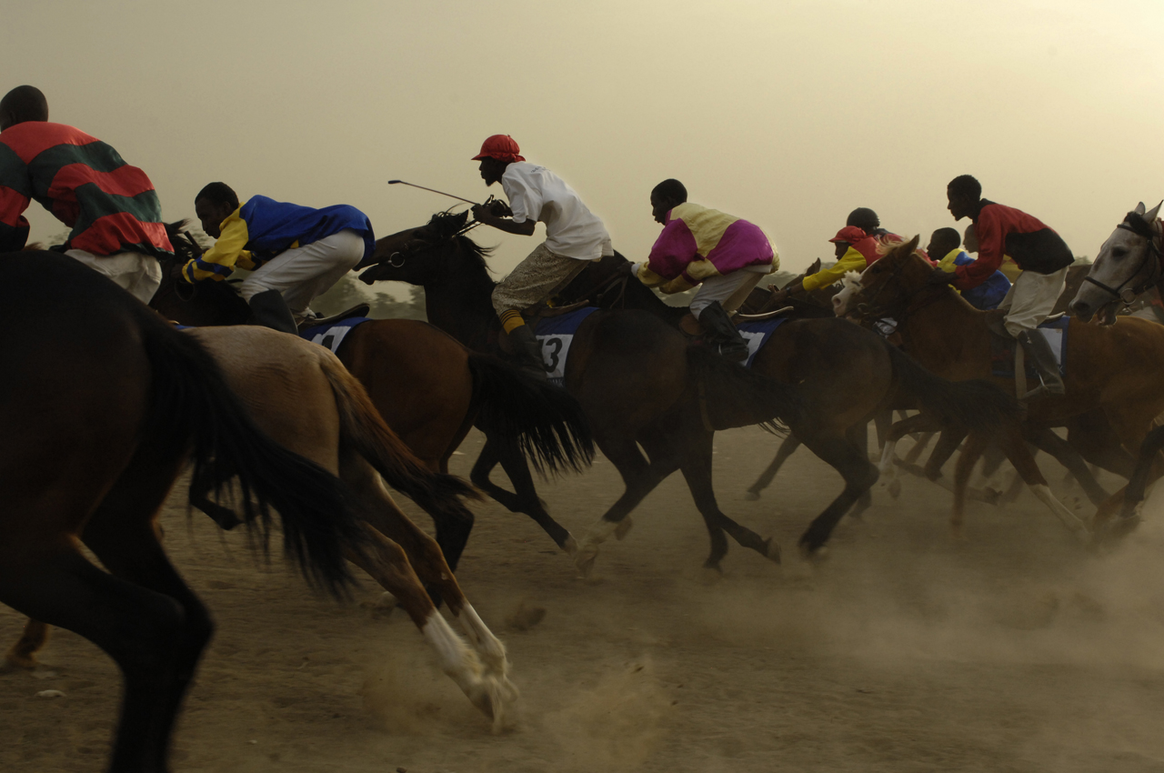 Djouhat, horse racing, Chad