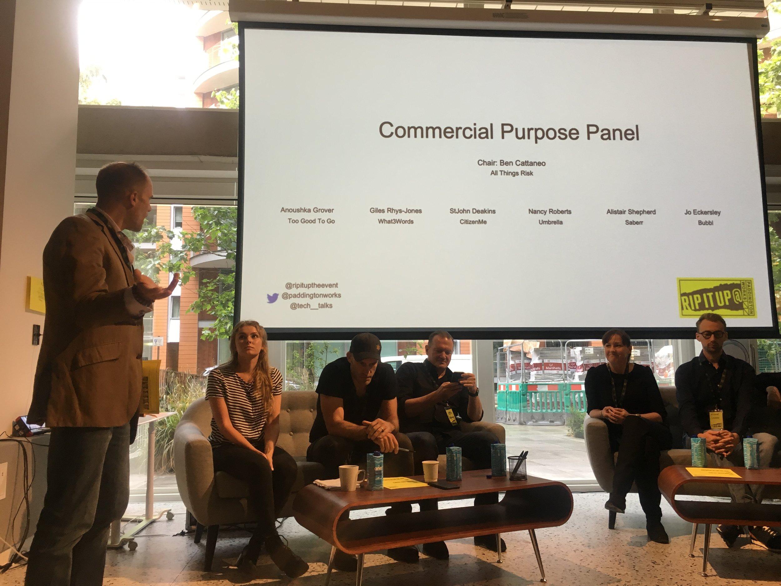 Commercial Purpose Panel.JPG