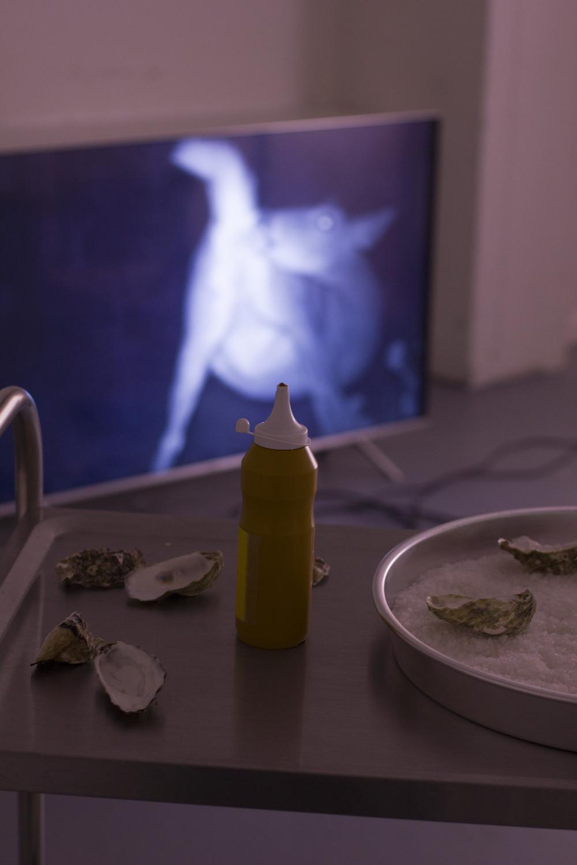 - TV:Isabella HemmersbachVariations on the asshole, 2018digital video, 1min30 (looped)Trolly:Anna Clarisse WæhrensDJ Mustard, 2018Oyster shells, sausages, mustard