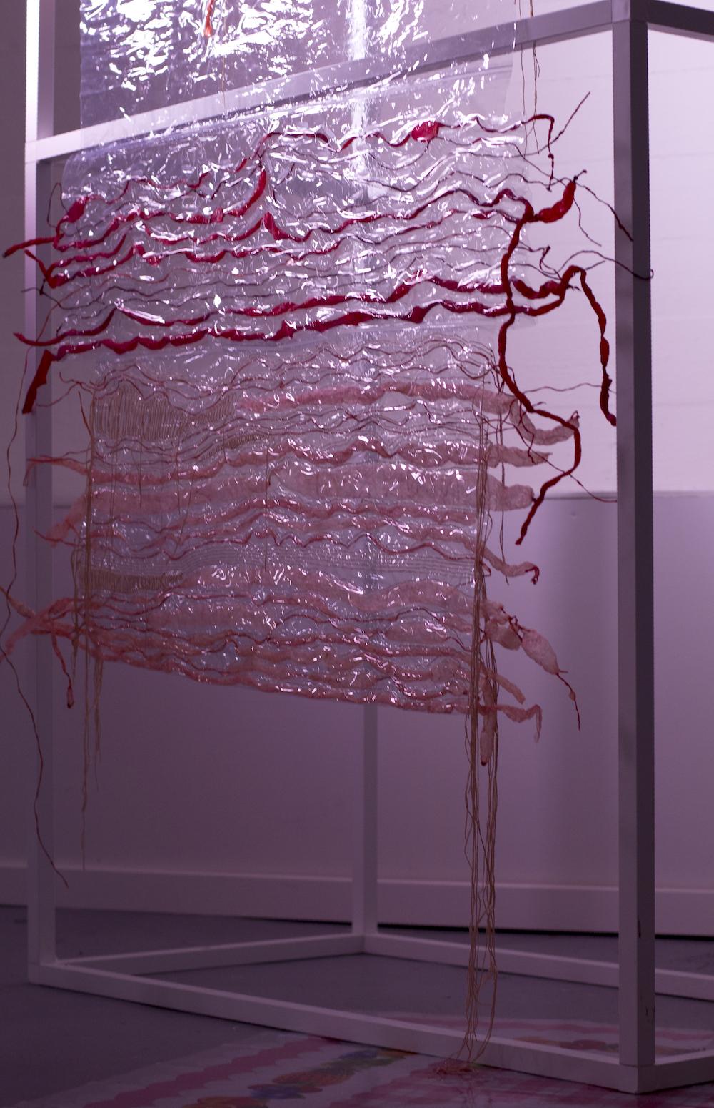 - Anna Clarisse WæhrensThe Würstel Project: Darm, 2017PVC, dyed pig intestines, thread