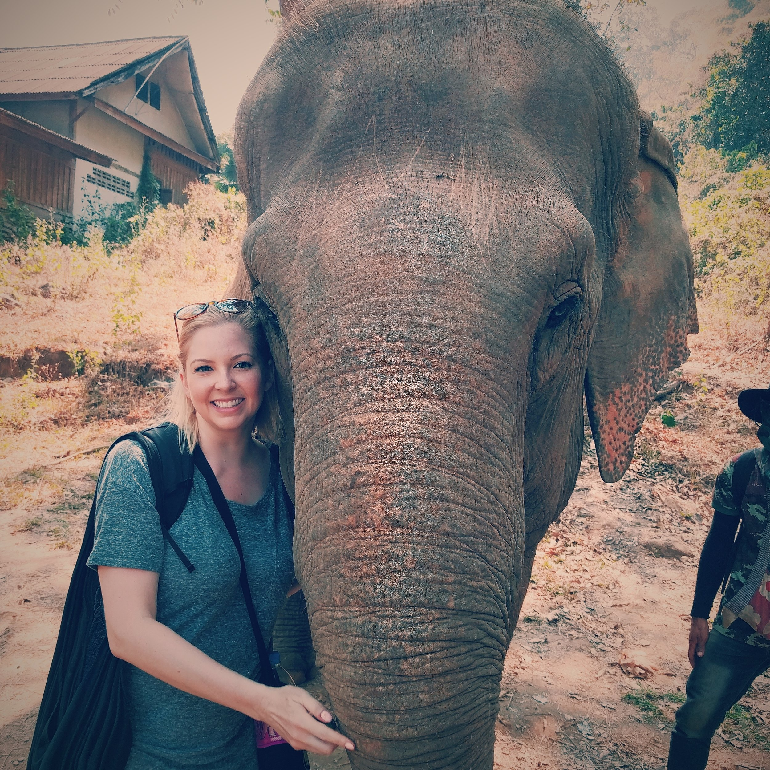 Hugging elephants in Elephant Nature Park