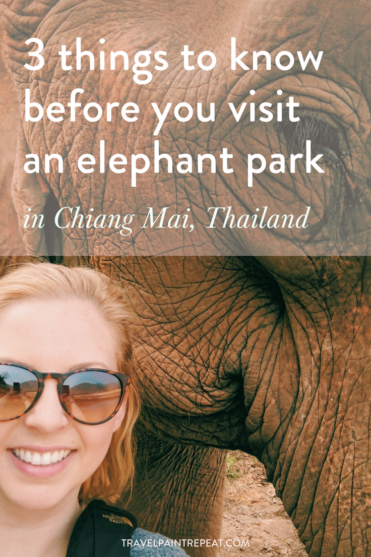 3 things to know before you visit an elephant sanctuary in Chiang Mai, Thailand
