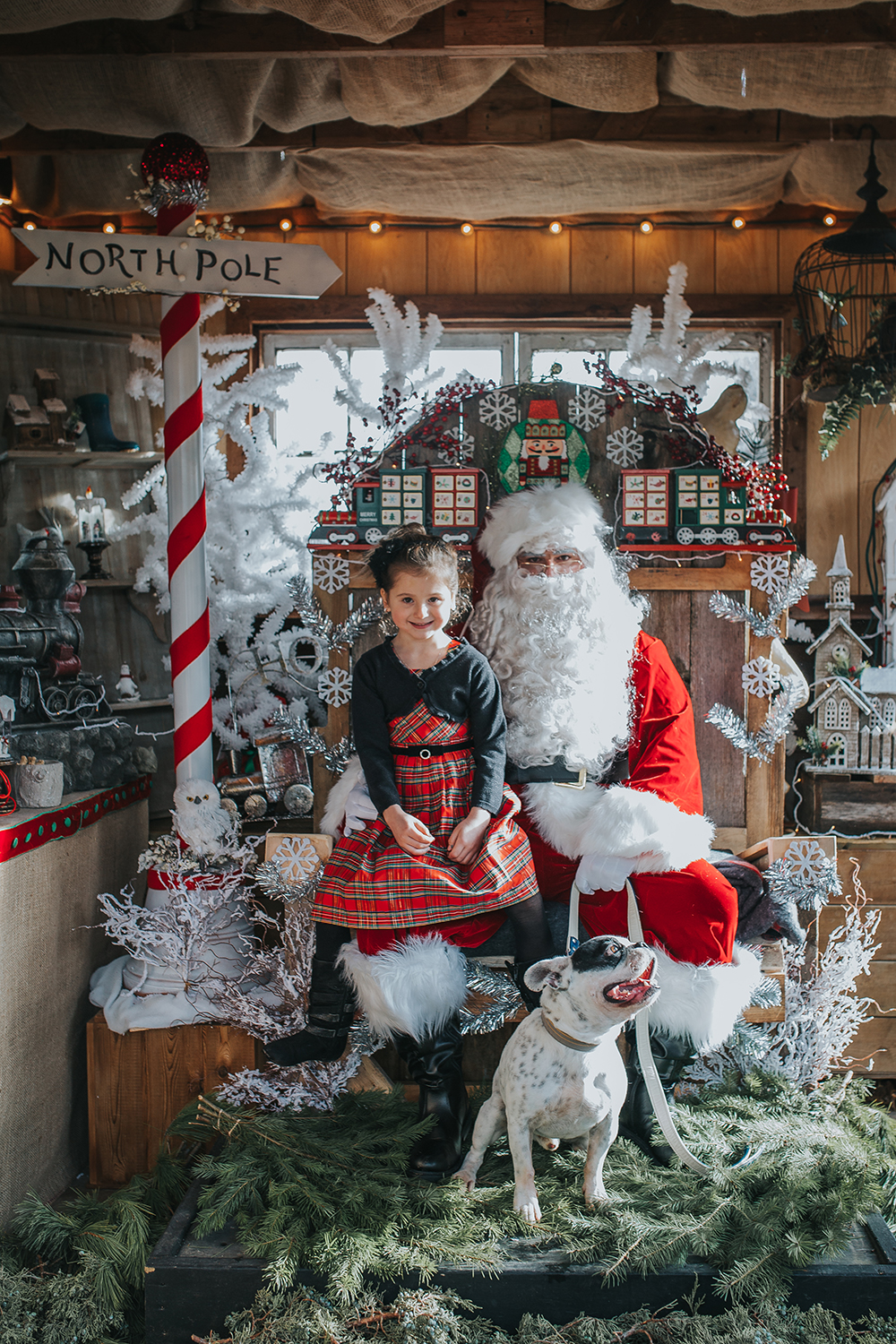 tcf_blush_santaphotos2016_027.jpg