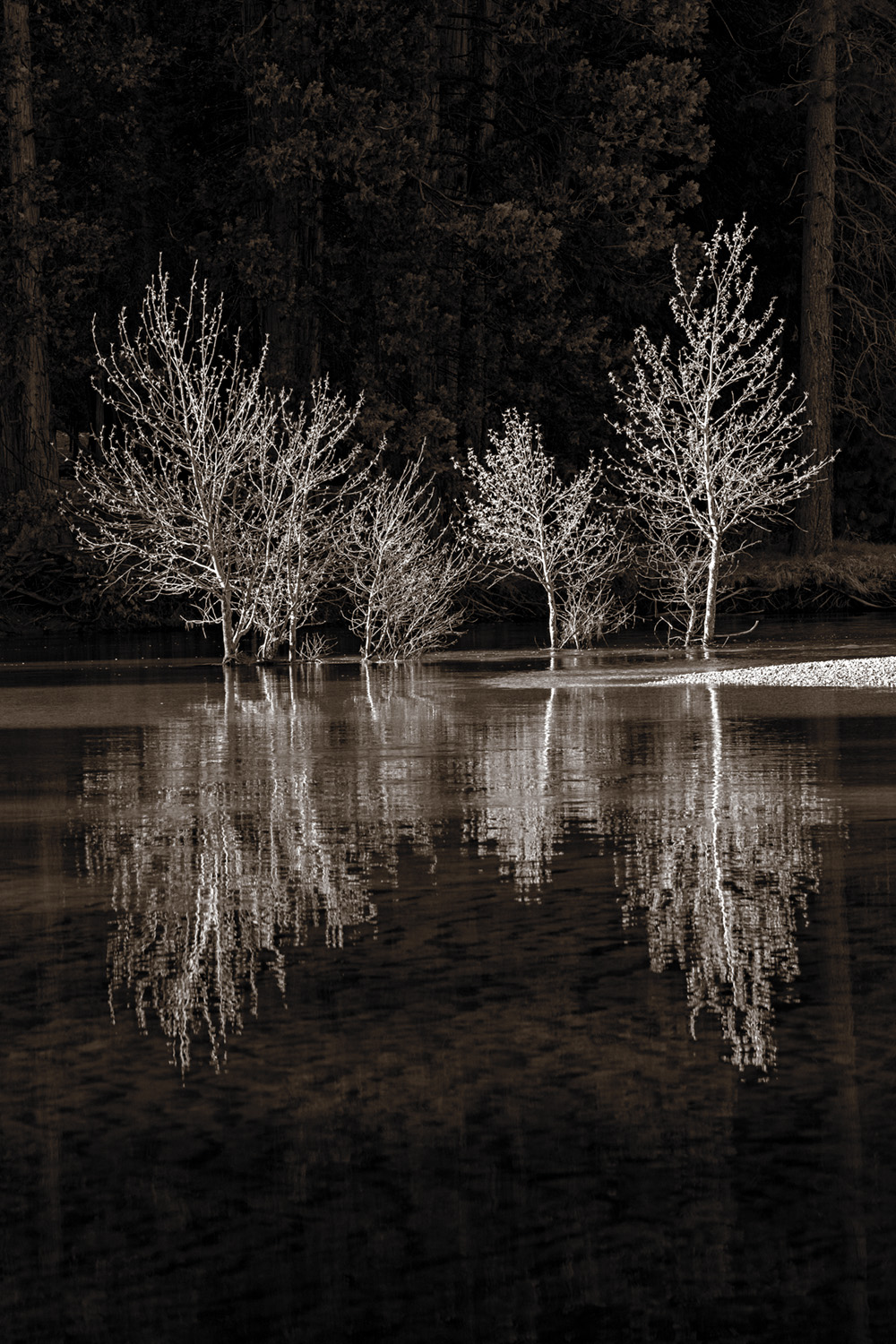 Reflections on the Merced