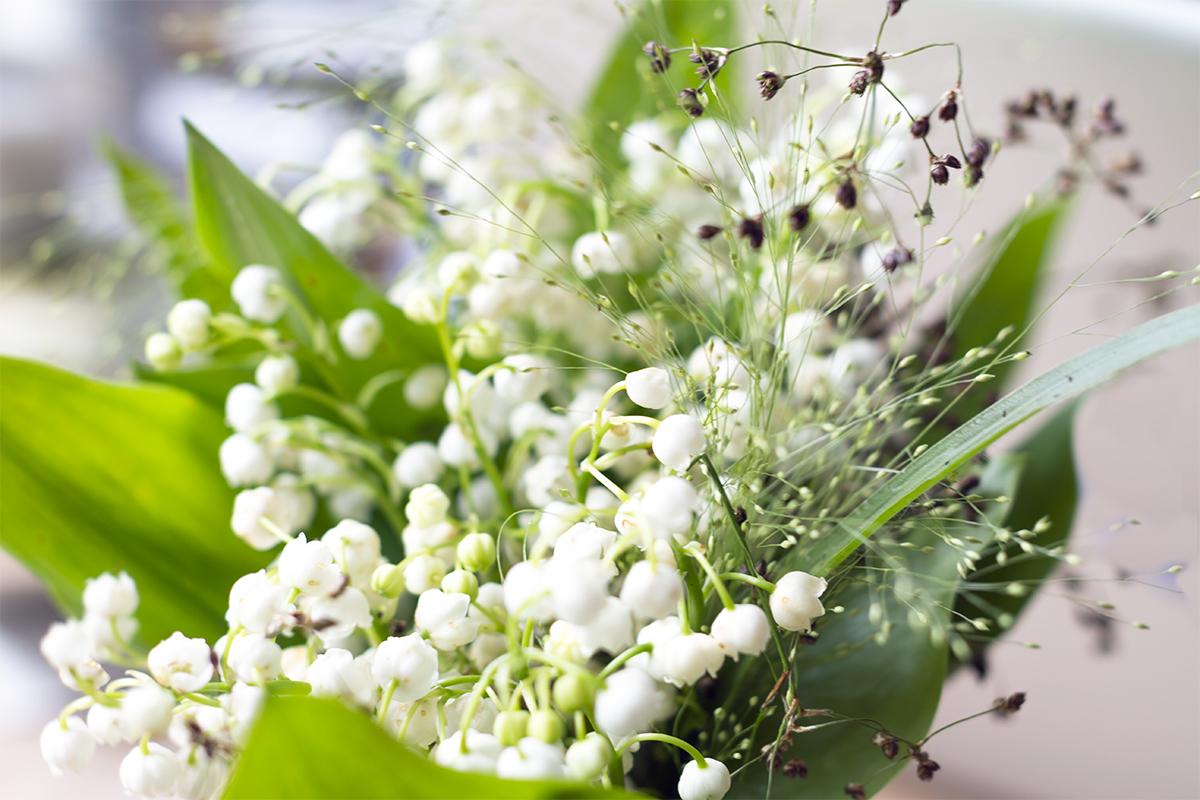 blomster03.jpg