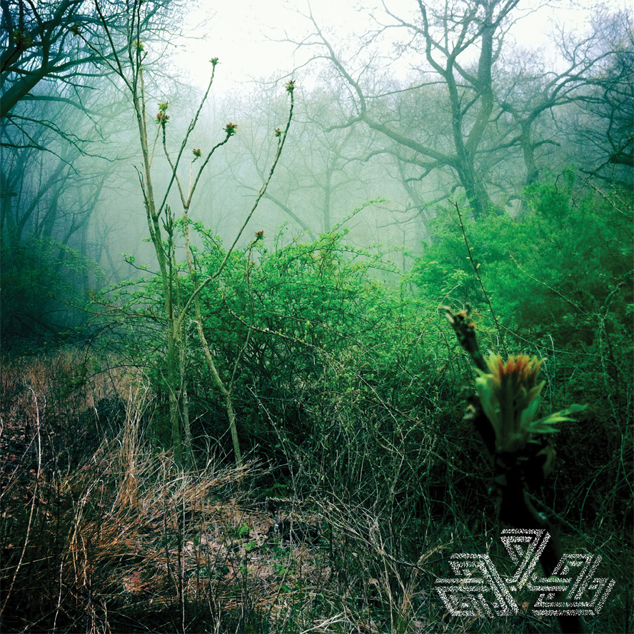Check Your Swing  (Hands in the Dark 2012)  Buy on Bandcamp     Label Website