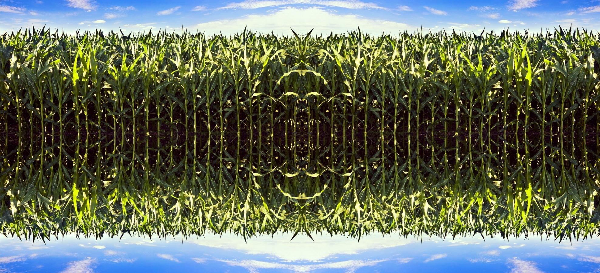 shutterstock_150154451.jpg