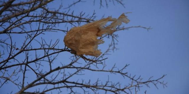 plastic-bag.jpg