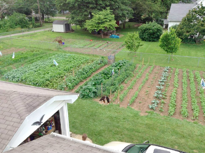 Urban-Farming-for-Social-Mission-and-Good-Eating-Too.jpg