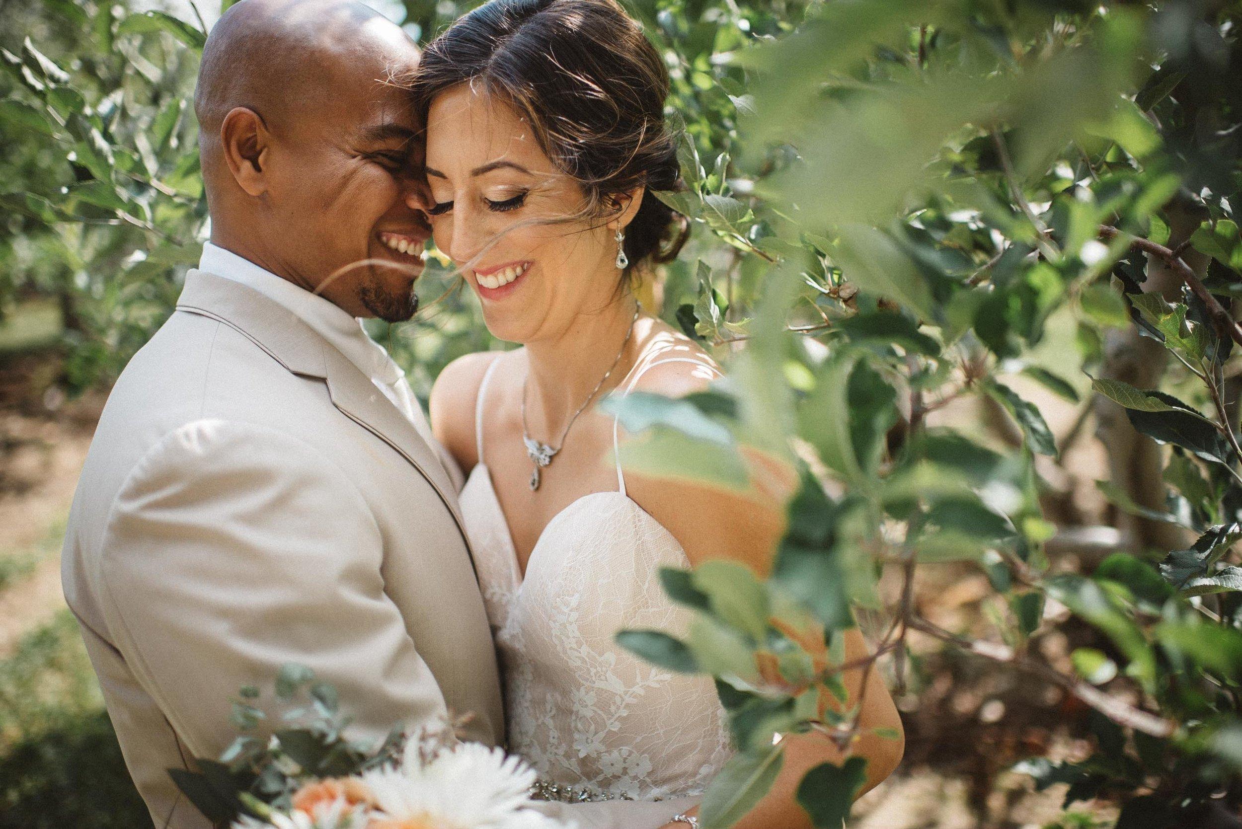 mapleside farm wedding-0041.jpg