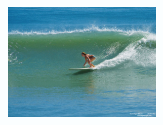 2010 Boardrider of the month SURFER REVIEW