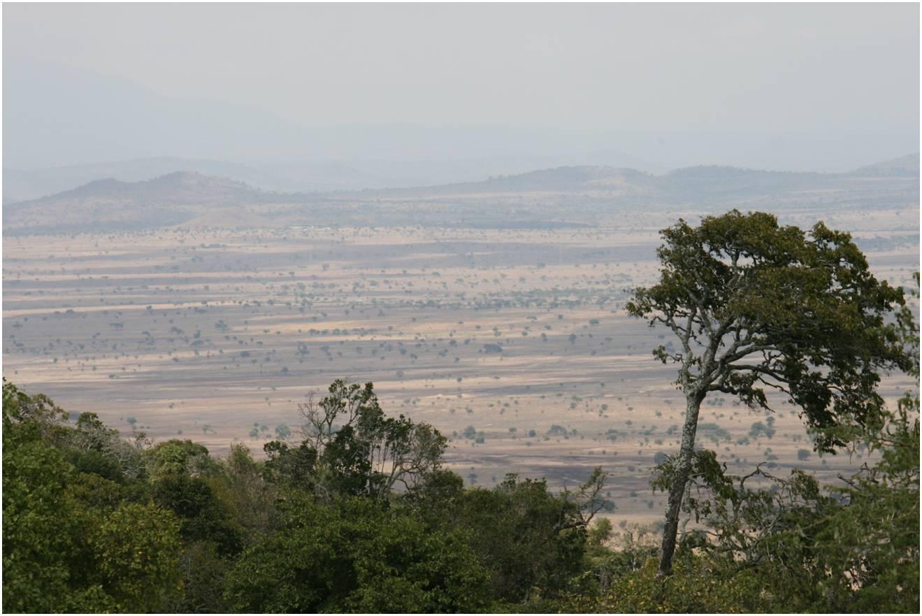 maasailand.jpg