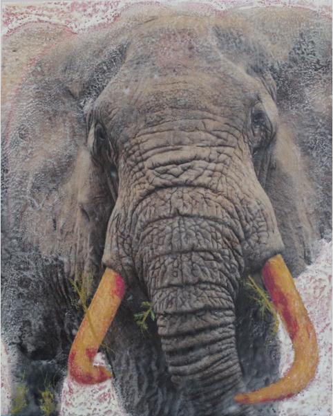 Bull Elephant,, Ngorogoro Crater, Tanzania, 2009 Mixed media, photography, encaustic,16x20 on wood panel