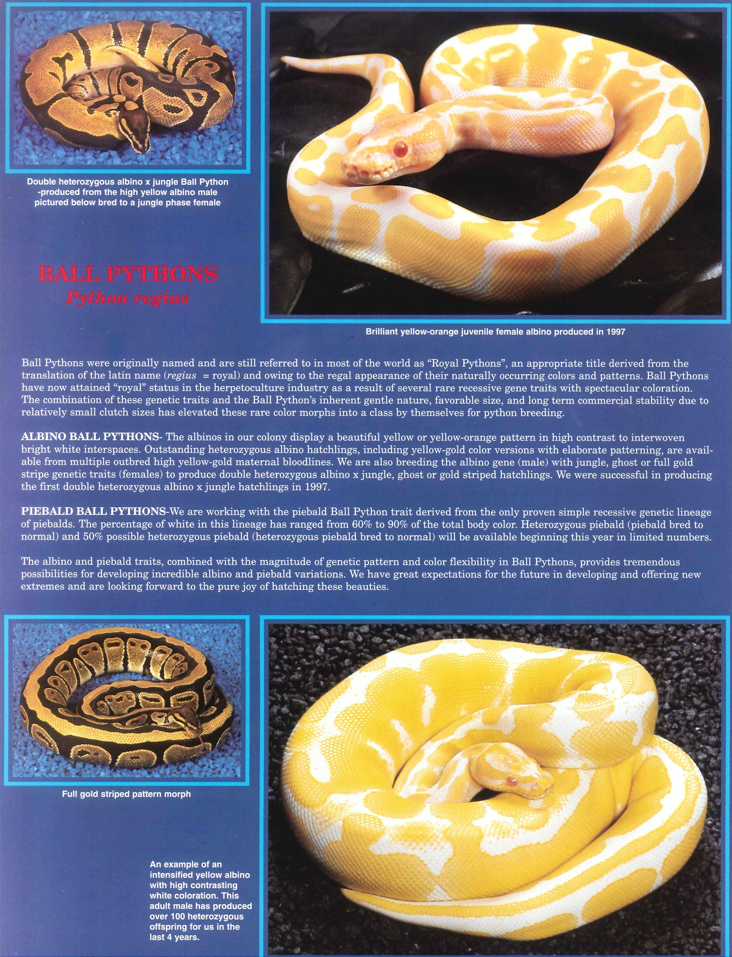 Professional Breeders Brochure_4.jpg