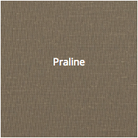 Coated_Praline.png