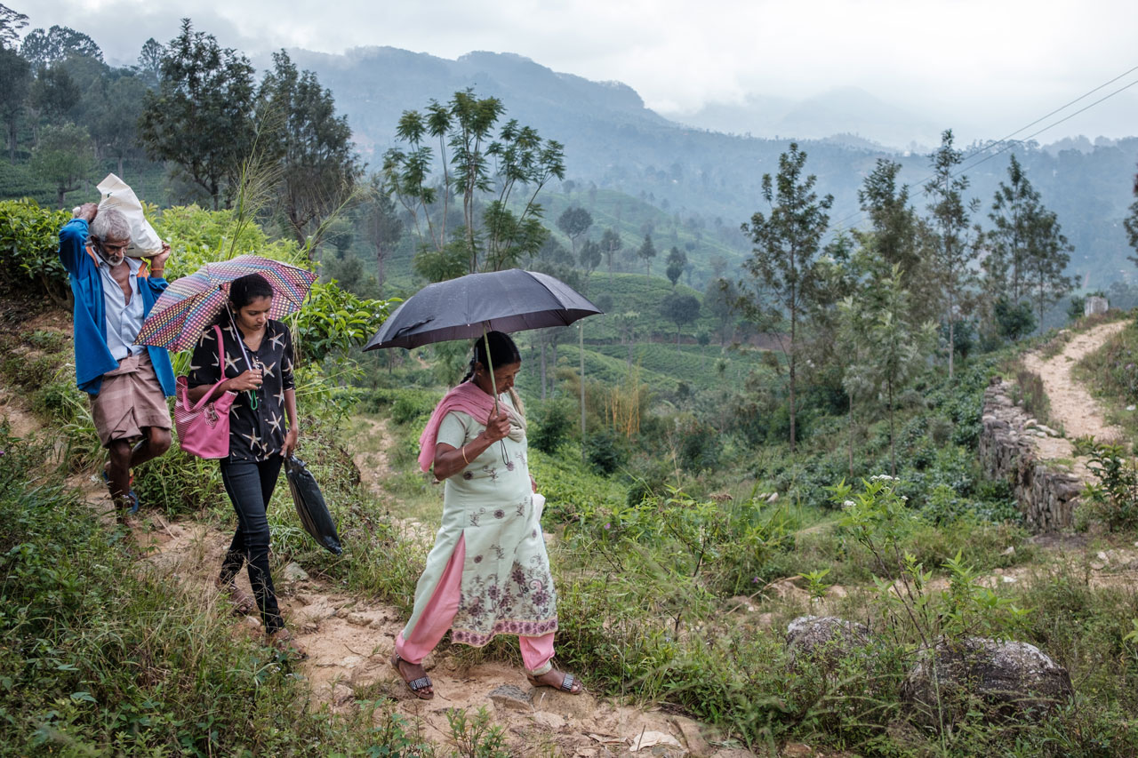 Copy of family with umbrellas walking on path in the hills of the countryside sri lanka