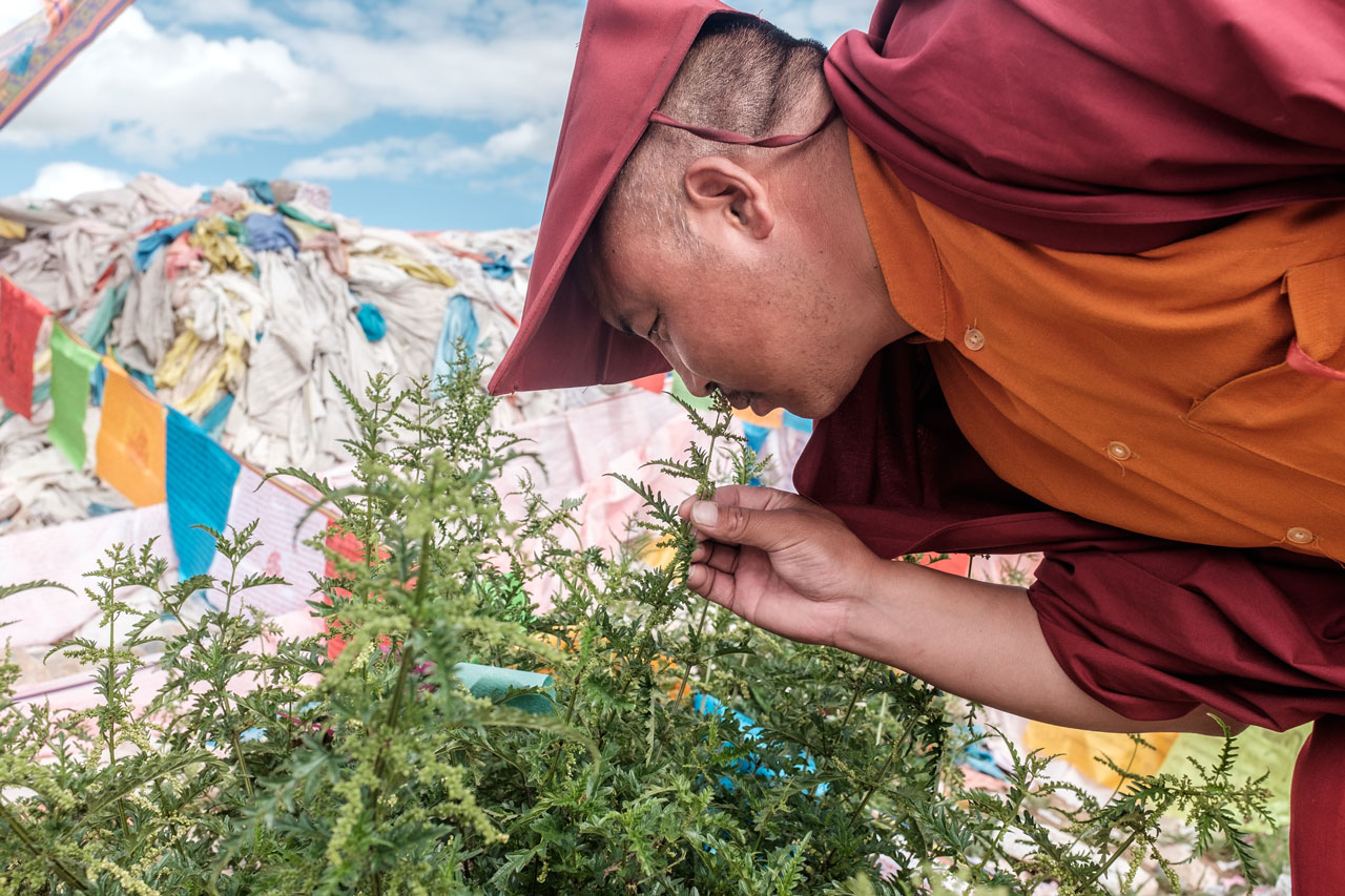 tibetan monk smelling flowers