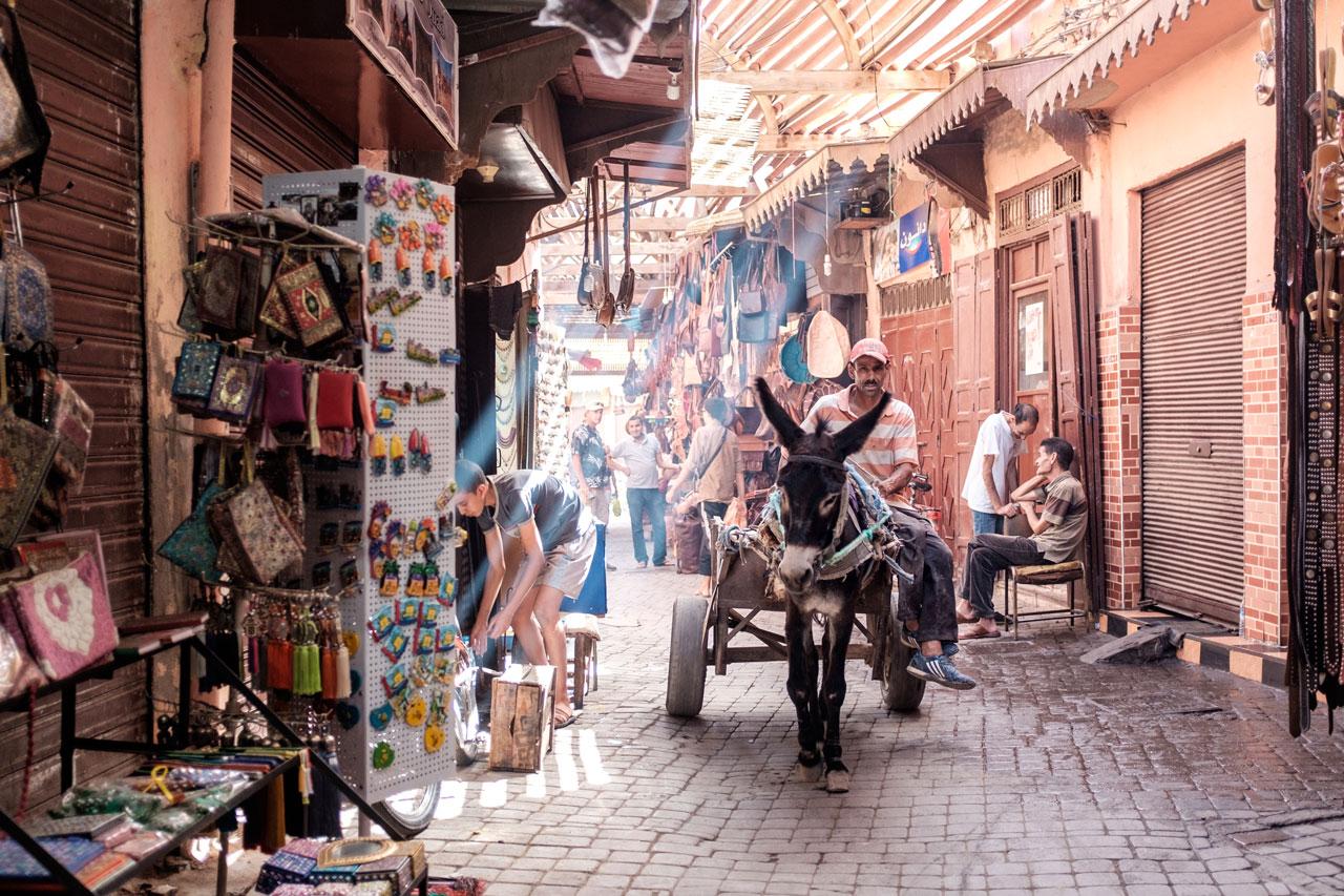 morocco marrakech souks donkey pulling cart