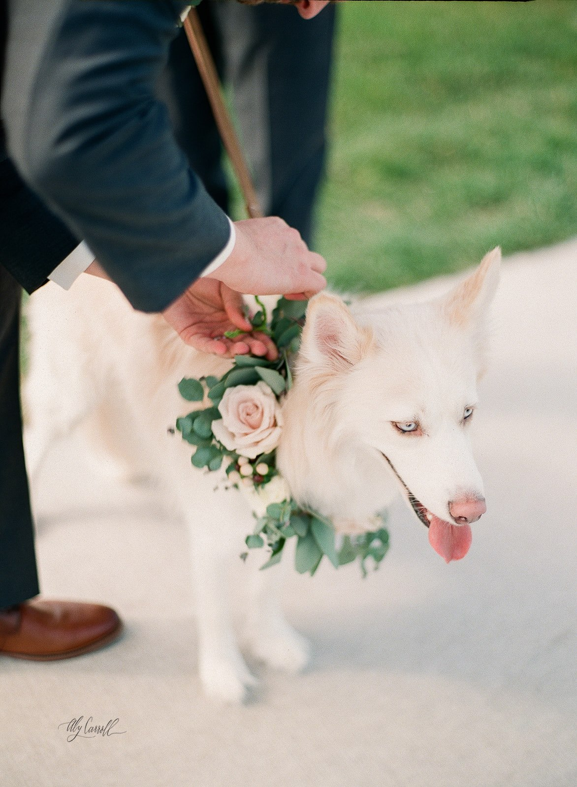 Sarah___Jake___Wedding_Film-297.jpg
