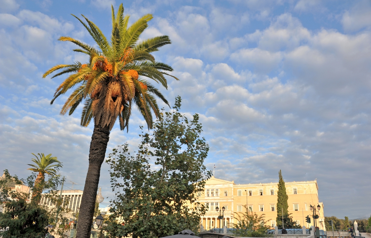 syntagma square by parliament