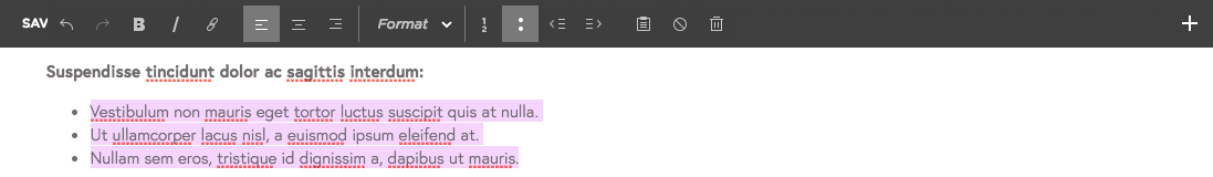 S1862_creating-bulleted-lists-in-squarespace.png