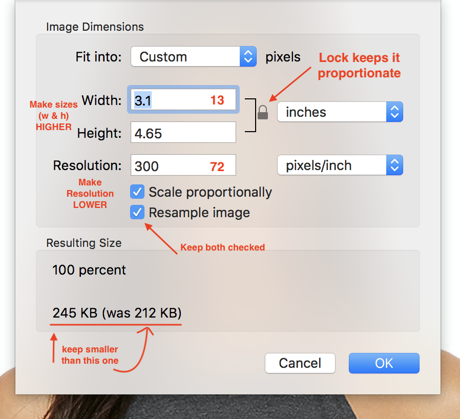 What to change & pay attention to, within the re-size tool pop-up window. (Click to enlarge)