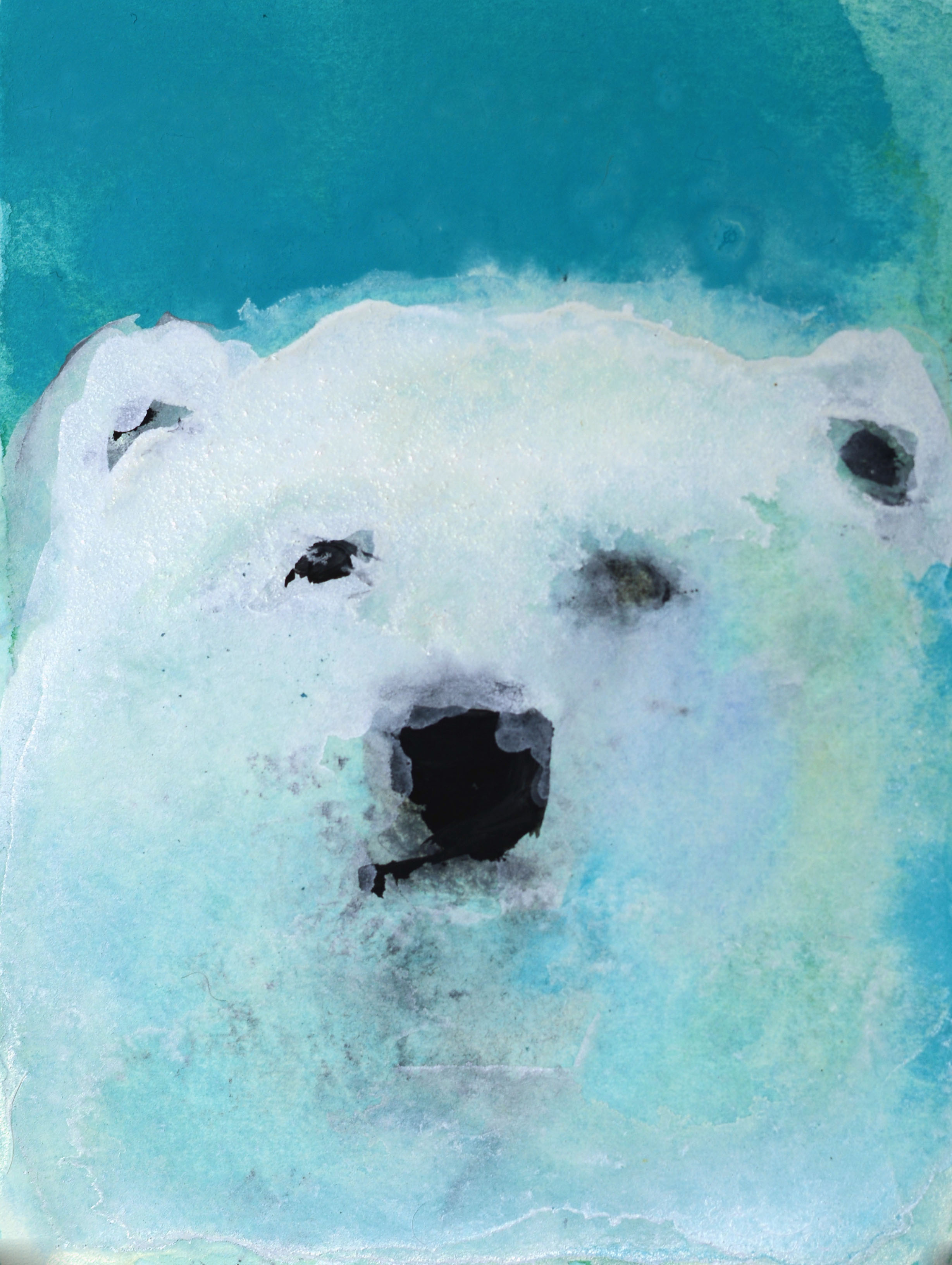 Rebecca_Kinkead_polar bear (on blue)_4x3 inset on 11x7.5 paper.jpg