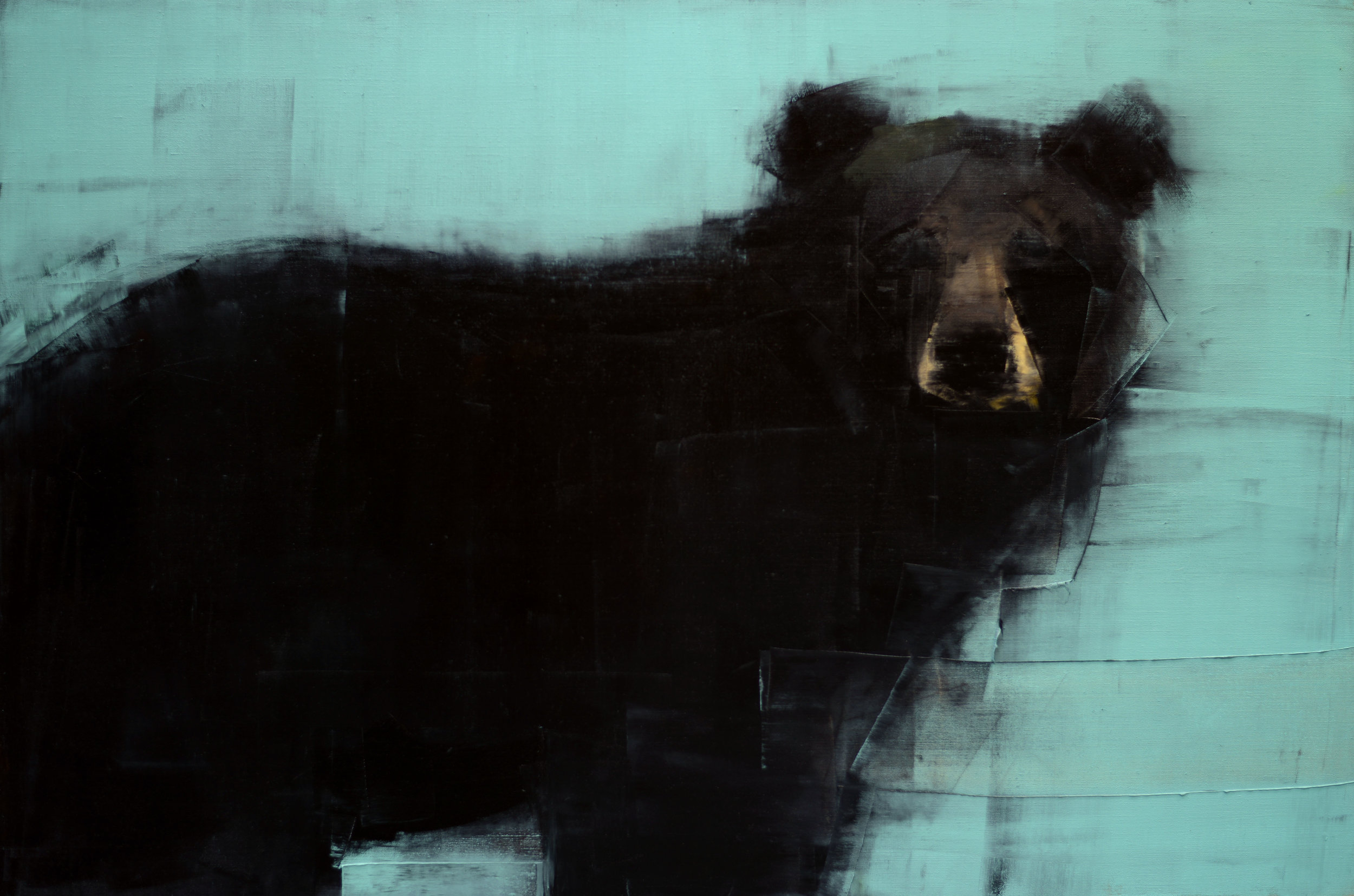 BLACK BEAR (ON BLUE)   -PRIVATE COLLECTION-  40 x 60 inches  oil and wax on linen