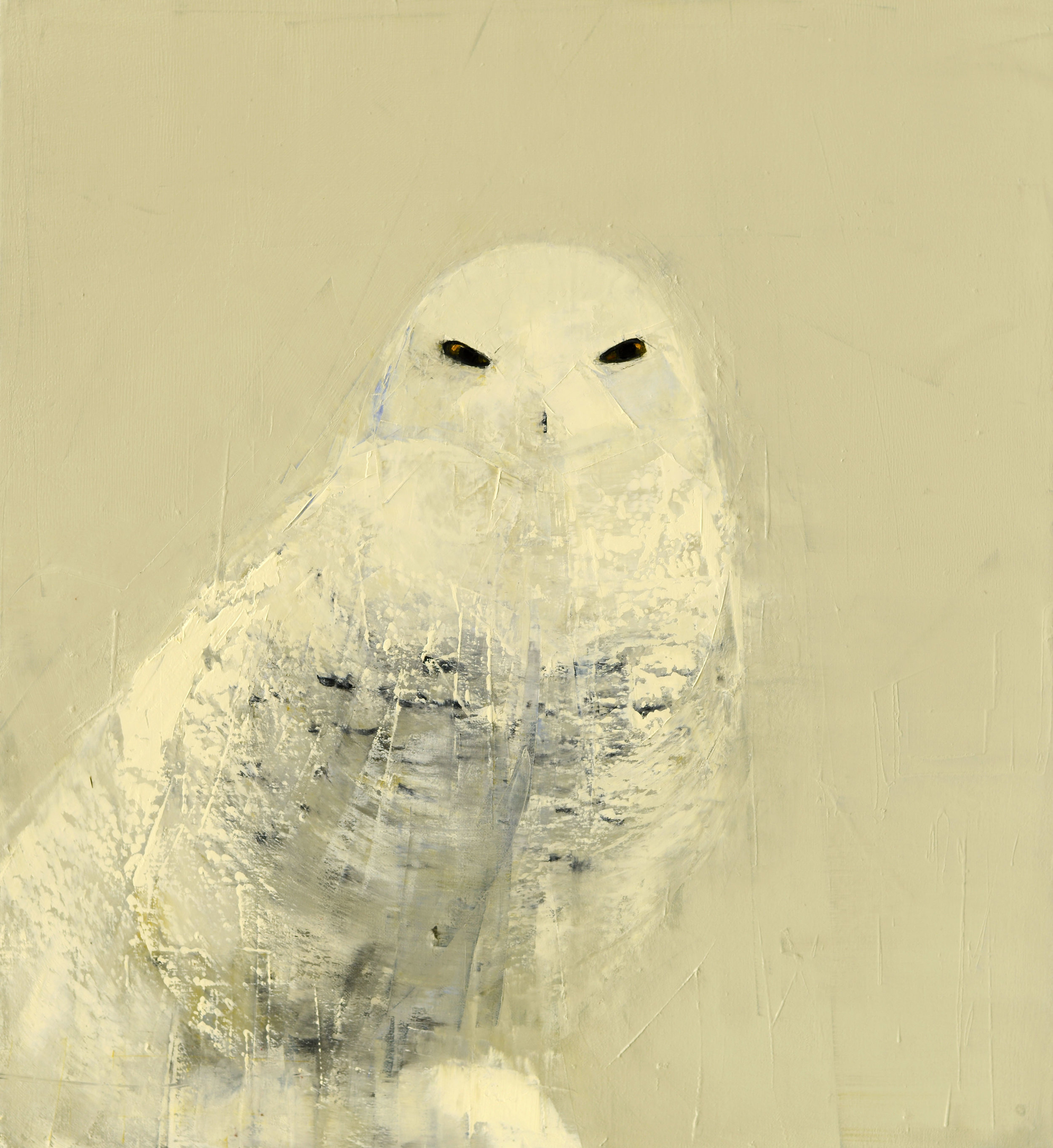 SNOWY OWL (WHITE ON CREAM)   -PRIVATE COLLECTION-  33 x 30 inches  oil and wax on linen