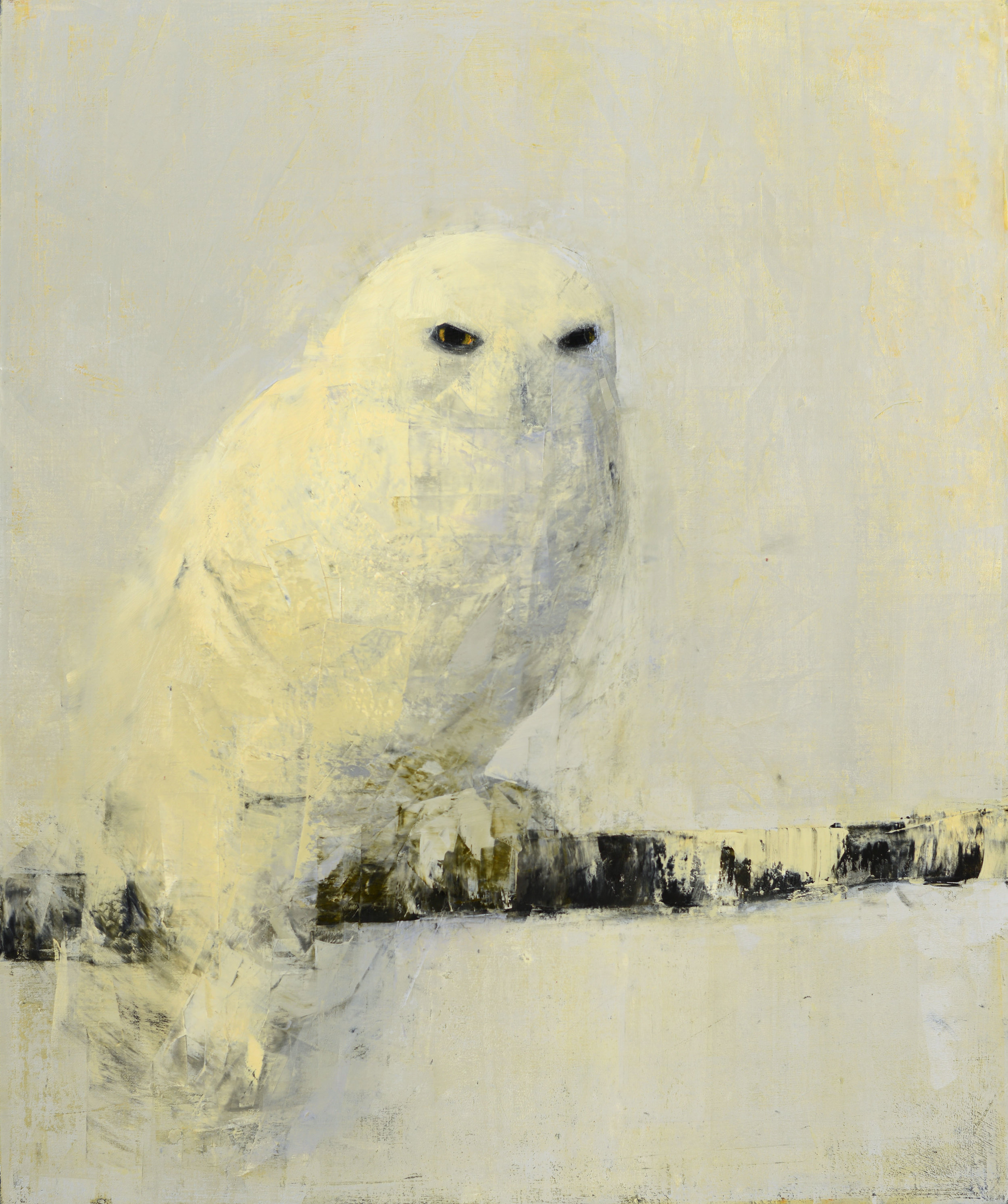 SNOWY OWL (BIRCH PERCH)   -PRIVATE COLLECTION-  33 x 30 inches  oil and wax on linen