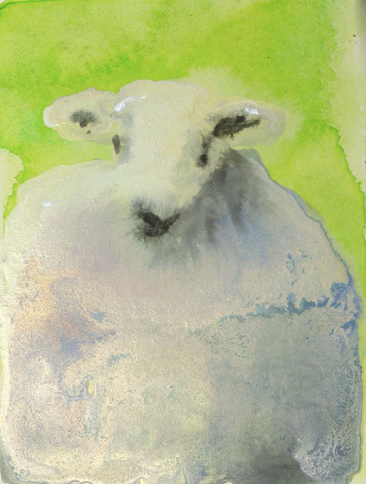 Rebecca_Kinkead_Arctic+Hare+Study+no-1.10_inset+on+11+x+7.5.jpg
