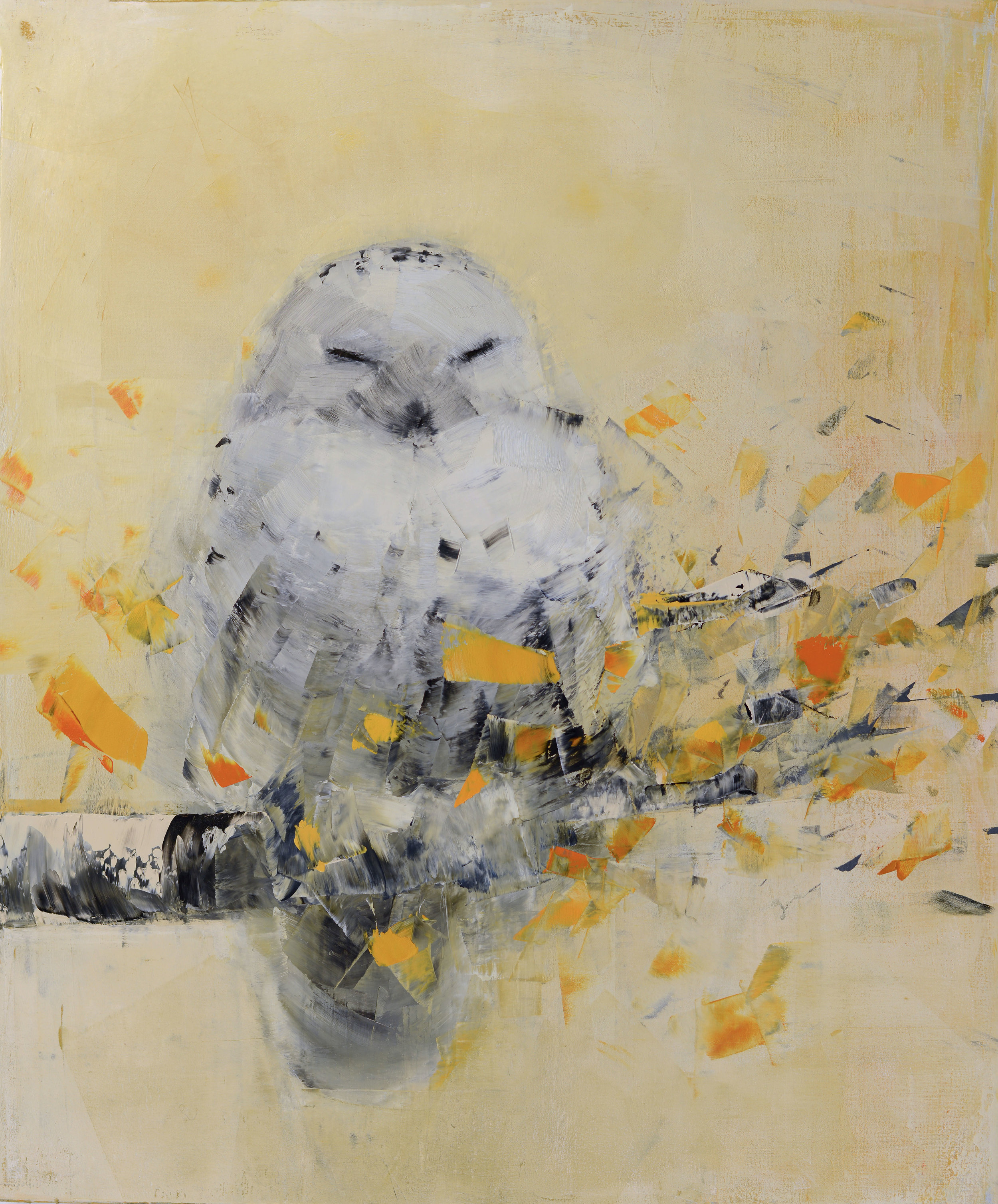 Snowy Owl dreaming in Gold_36 x 30.jpg