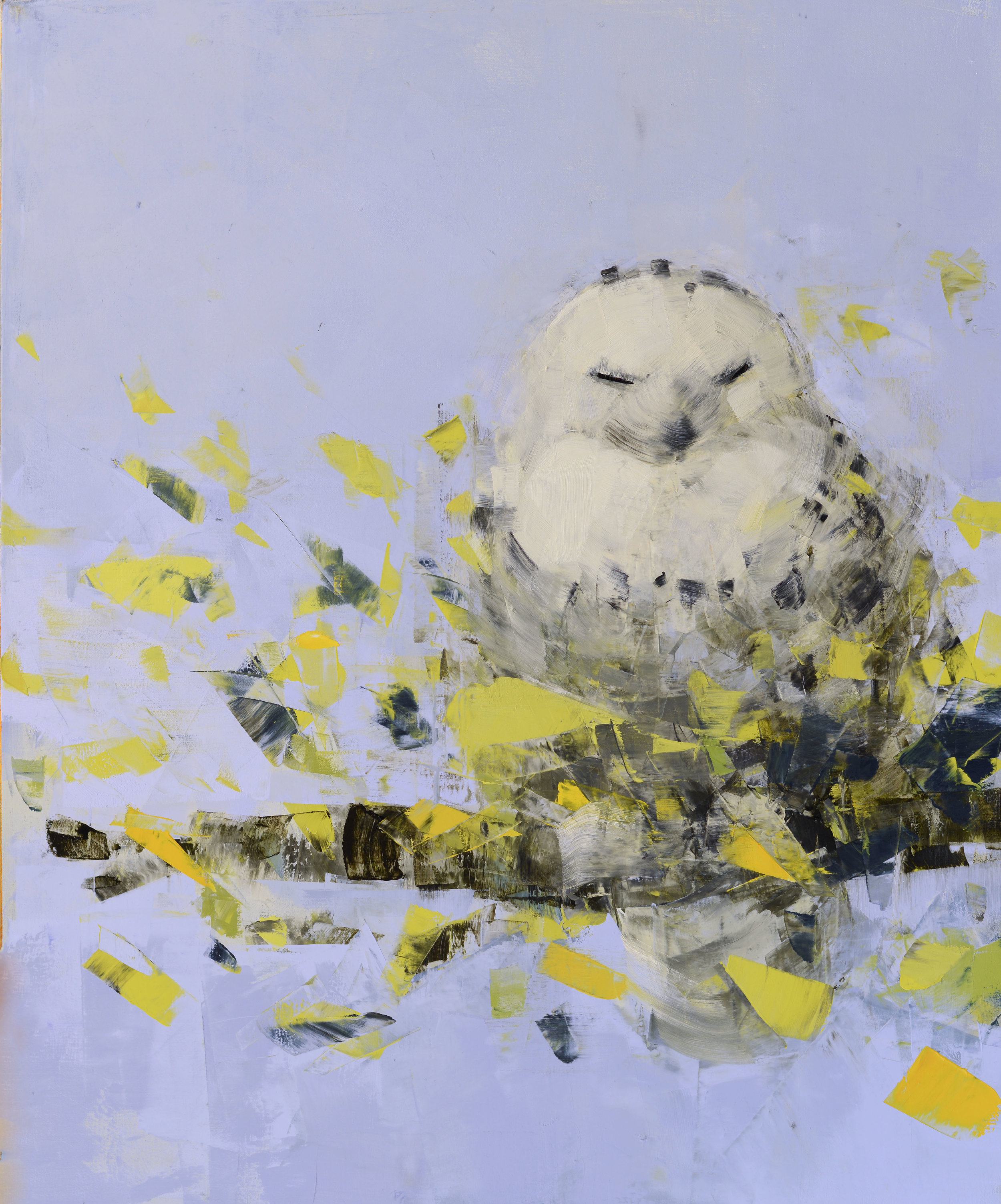 Snowy Owl dreaming in Blue and Green_36x30.jpg