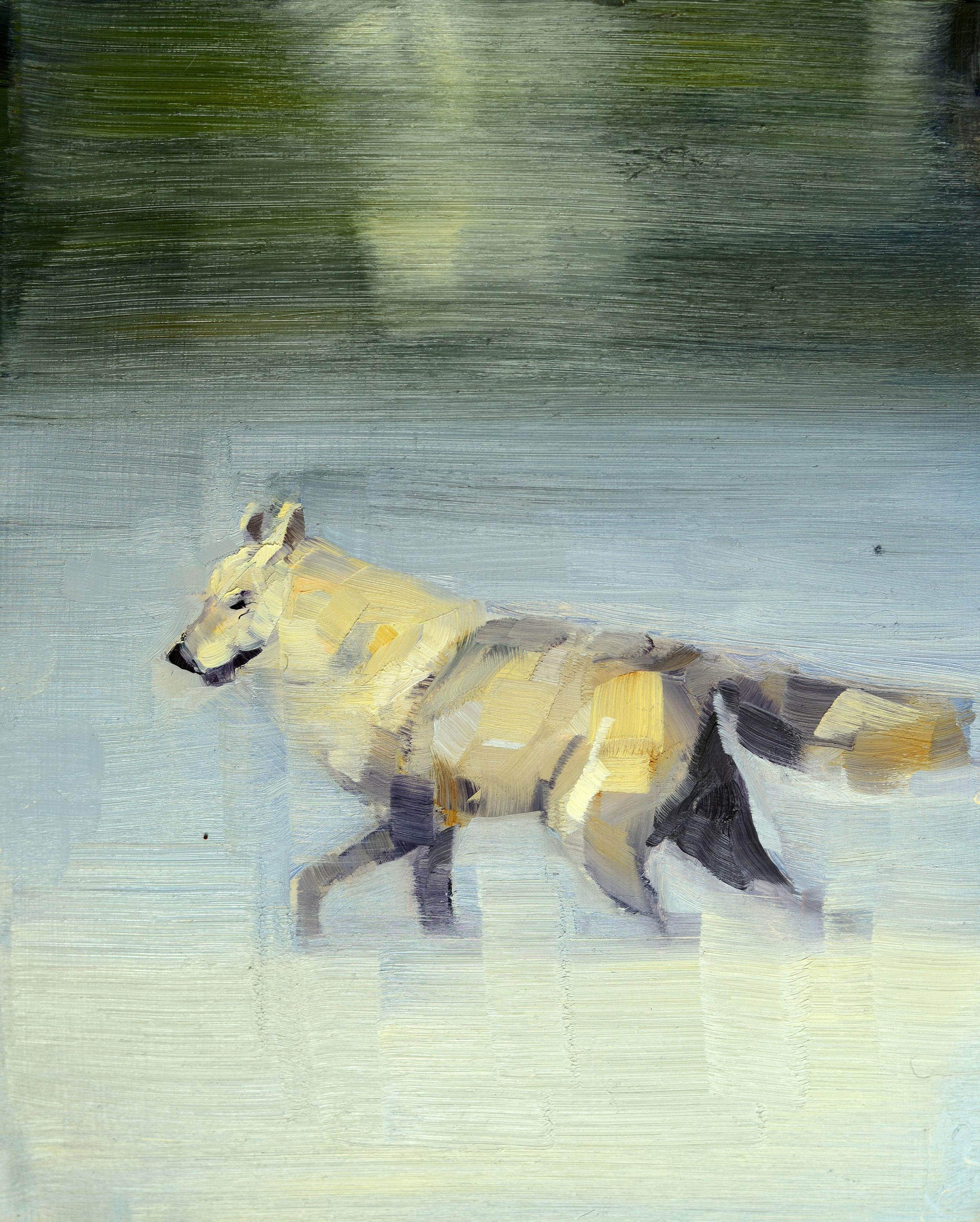 WHITE WOLF (TRAVELER)_10X8.jpg